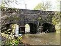 SJ9398 : Aqueduct over the Tame by Gerald England