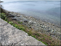 J3829 : Rocky coastline below the Kilkeel Road (A2) by Eric Jones
