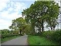 SJ7276 : Sudlow Lane by Christine Johnstone