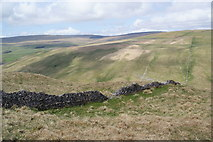 SD9170 : Dry stone wall above Cowside Beck by Bill Boaden