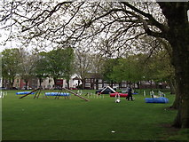 TQ7668 : Dog Agility Course, Great Lines Heritage Park by David Anstiss