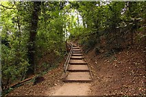 TA0225 : Steps up to the car park by Steve Daniels