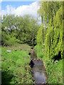 SP0283 : Isaac Flavell Weir on the Bourn Brook by Roy Hughes