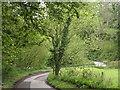 SU7531 : Winding Lane, Empshott by Colin Smith