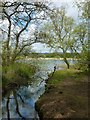 NO4901 : Loch inlet by James Allan