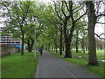 NT2572 : North Meadow Walk (cycle path) by JThomas