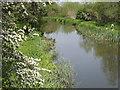 TQ0557 : Wey Navigation Below Walsham Gates by Colin Smith