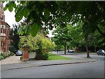 SK5639 : Nottingham - NG1 (Park) by David Hallam-Jones
