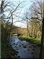 SE1763 : River Nidd by Derek Harper