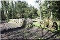 TQ0247 : Millstones plus one by Bill Nicholls