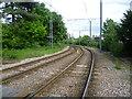 TQ3165 : Tramlink east of Wandle Park Tramlink Stop by Marathon
