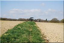 TQ1328 : Footpath to Itchingfield by N Chadwick