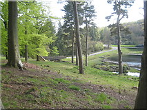 NU0702 : The main entrance to the Cragside Estate by Jonathan Thacker