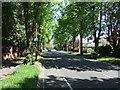 SK6304 : Spencefield Lane (B667) by JThomas