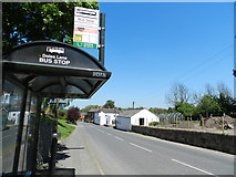 SK3030 : Bus stop, Doles Lane by Peter Barr