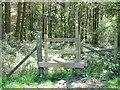 SK0445 : Stile on the path into Key Wood by Ian Calderwood