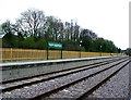 TQ3838 : Bluebell Railway platform, East Grinstead by nick macneill
