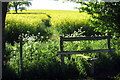 SP7835 : Stile on the path over the field to Beachampton by Philip Jeffrey