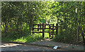 TQ6996 : Pedestrian entrance to Norsey Wood by Roger Jones