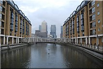 TQ3680 : Nelson Dock by N Chadwick