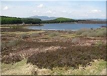 NN7754 : Loch Kinardochy by Richard Webb