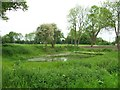 TG0905 : Carleton Forehoe, Low Road, Pond by Jeremy Osborne