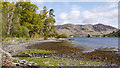 NG8824 : Shore of Loch Duich beside Druidaig Lodge by Trevor Littlewood