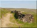 SD9613 : Pennine Bridleway (Rochdale Way) by David Dixon