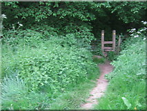 NZ3411 : Stile for The Teesdale Way leading into Dinsdale Wood by peter robinson