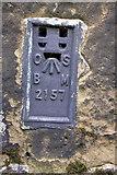 SE3694 : Benchmark bracket on All Saints Church by Roger Templeman