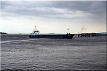 SJ3290 : Niklas, River Mersey by El Pollock
