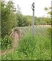 SK5737 : Nottingham - NG2 (Wilford Area) by David Hallam-Jones