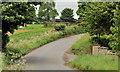 J2865 : The Tullynacross Road near Hillhall, Lisburn by Albert Bridge