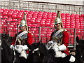 TQ3080 : Mounted Life Guards by Colin Smith