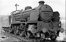 TQ2976 : SR U1 class 2-6-0 at Stewarts Lane Locomotive Depot by Ben Brooksbank