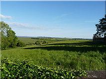 NX4355 : Farm Land by Billy McCrorie