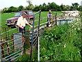 SP3463 : Sorting the Sheep by Nigel Mykura