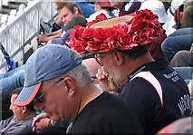 SK5838 : Red roses at Trent Bridge by John Sutton