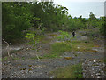SD4588 : Catcrag Quarry, Township Plantation by Karl and Ali