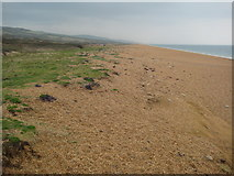 SY5088 : Cogden Beach by Philip Halling