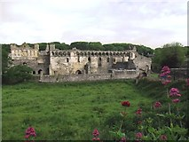 SM7525 : Ruins of The Bishop's Palace by Anthony Parkes