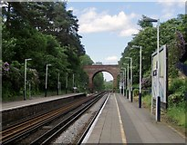 TQ1461 : Oxshott station: view from the down platform by Stefan Czapski