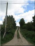 TQ4102 : Roderick Avenue North by Simon Carey