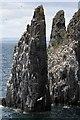 NT6598 : A sea stack at the Isle of May by Walter Baxter