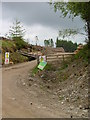 NH3531 : Clearfelling at Kerrow Wood by Dave Fergusson