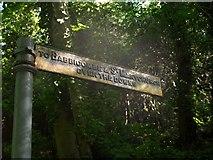 SX9364 : Footpath sign, Anstey's Cove Road by Derek Harper