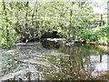 NU1417 : Bridge over Titlington Burn by Russel Wills