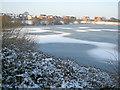SK7959 : Muskham Lake in winter by Trevor Rickard