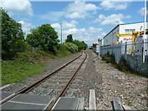 SJ7996 : Some more of the disused railway in Trafford Park by Alexander P Kapp