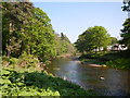 NU0601 : The River Coquet Below Rothbury by Paul Franks